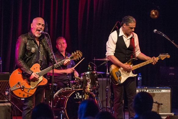 Black Sorrows 22082015-07