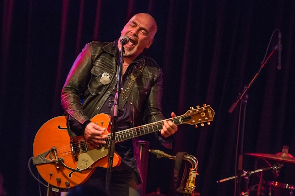Black Sorrows 22082015-14
