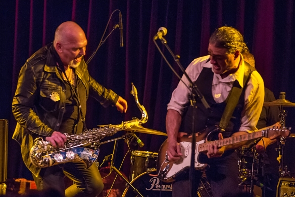 Black Sorrows 22082015-16