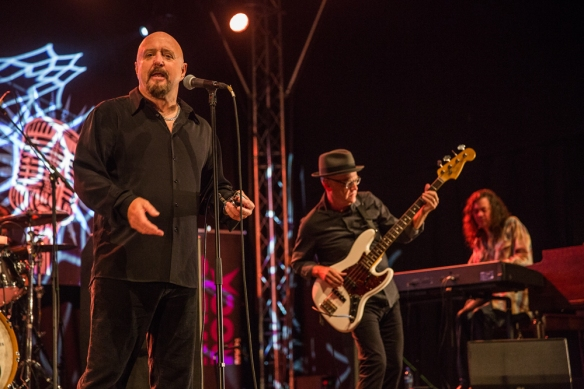 The Fabulous Thunderbirds © Per Ole Hagen