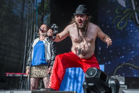 Trollfest © Per Ole Hagen