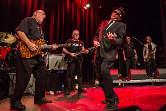 Blues Brothers Band 02092017-17